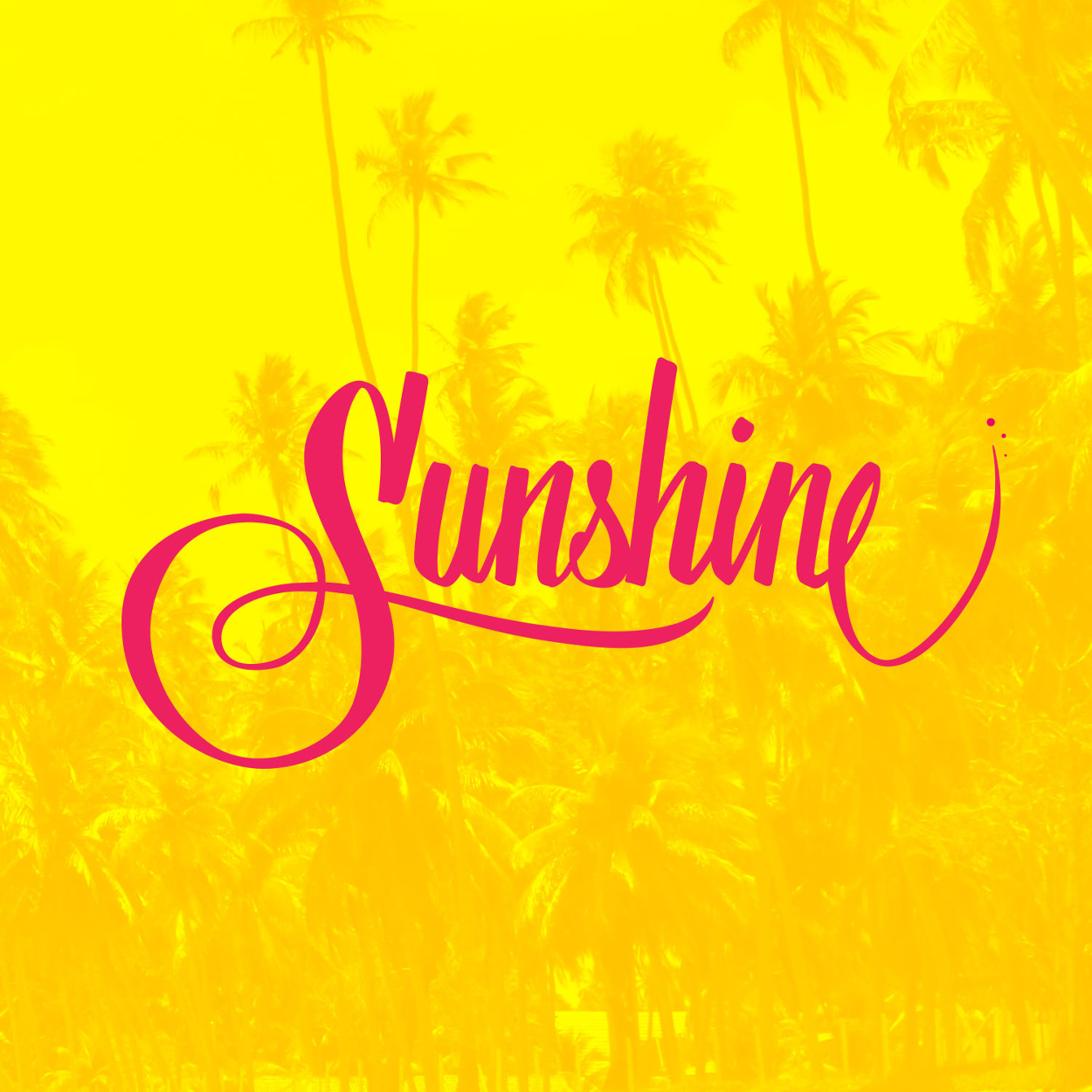 sunshine-on-pic_1250
